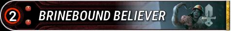 Brinebound Believer